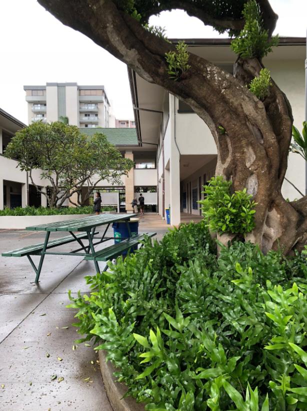 Punahou School Campus