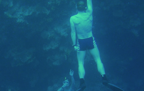 Free Diving: Would You Try?