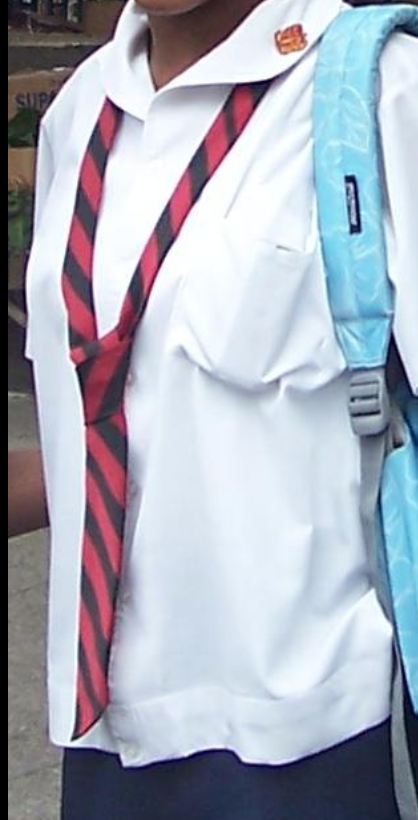 Sample uniform of Bishop Anstey High School. Photo by Kathy Smart-Preston. Wiki Commons.