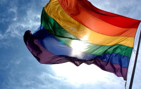 LGBTQA+ at Kalani