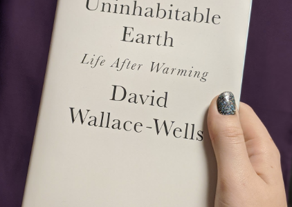 Wallace-Wells wrote an essay in 2017 called