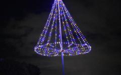 Night view of the tree atop Pu'u O Kaimuki Park on Monday, Dec. 7. Photo by Cooper Endo.