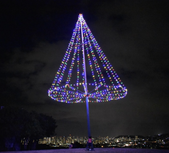 Night view of the tree atop Pu'u O Kaimuki Park on Monday, Dec. 7. Photo by Cooper Endo.